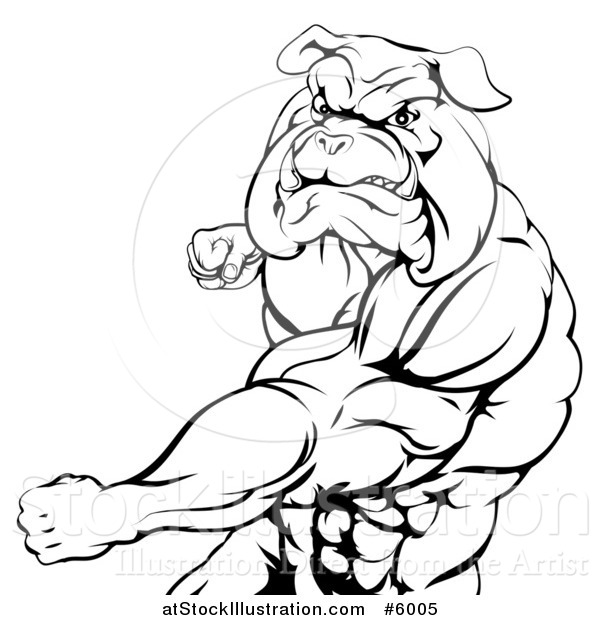 Vector Illustration of a Black and White Angry Muscular Bulldog Man Punching