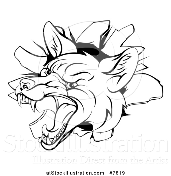 Vector Illustration of a Black and White Angry Vicious Fox Breaking Through a Wall