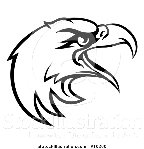 Vector Illustration of a Black and White Bald Eagle Mascot Head