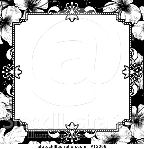Vector Illustration of a Black and White Border or Wedding Invitation with Hibiscus Flowers
