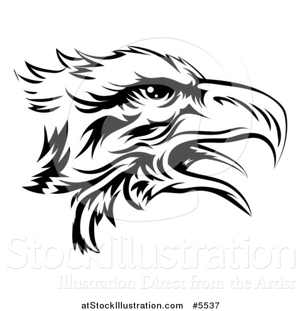Vector Illustration of a Black and White Eagle Head in Profile