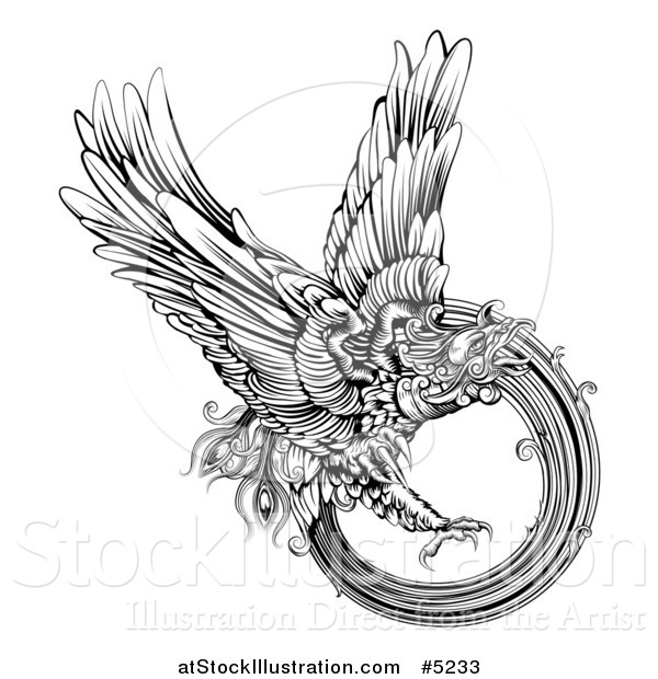Vector Illustration of a Black and White Engraved Majestic Phoenix Bird Flying