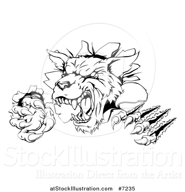 Vector Illustration of a Black and White Ferocious Wolf Slashing and Breaking Through a Wall 2