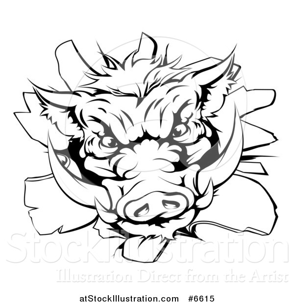Vector Illustration of a Black and White Fierce Boar Head Breaking Through a Wall