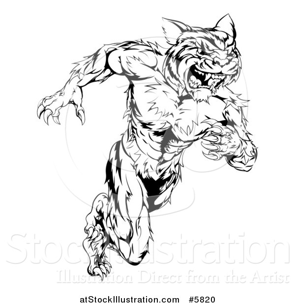 Vector Illustration of a Black and White Fierce Muscular Running Tiger Man Mascot