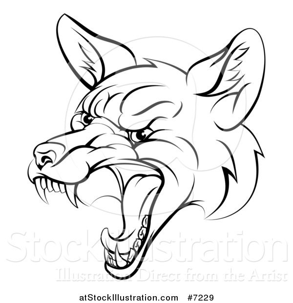 Vector Illustration of a Black and White Mad Fox Face