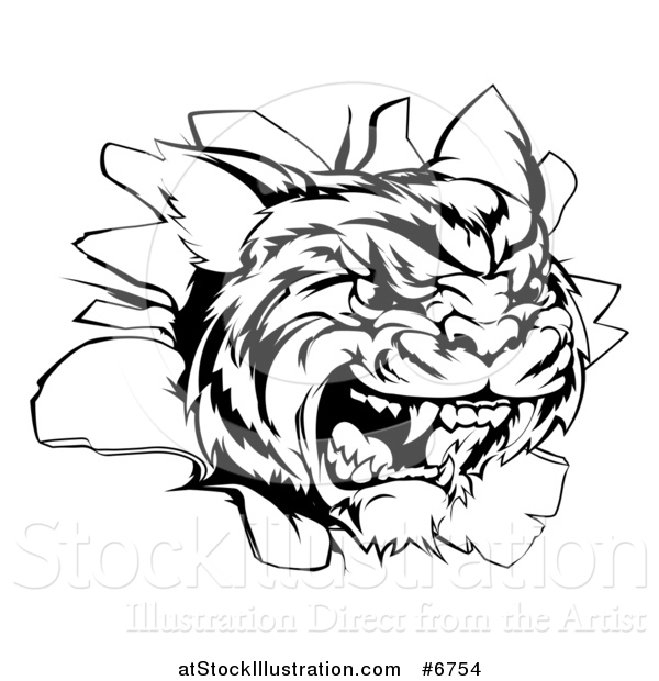 Vector Illustration of a Black and White Mad Tiger Mascot Head Breaking Through a Wall
