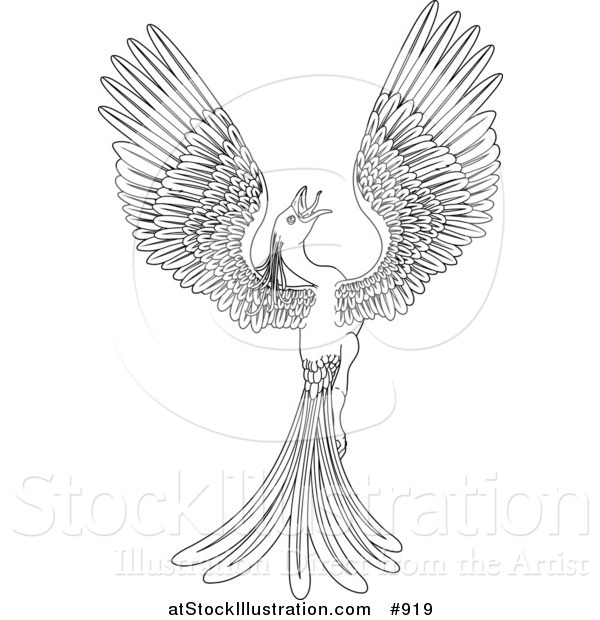 Vector Illustration of a Black and White Magical Flying Phoenix Bird