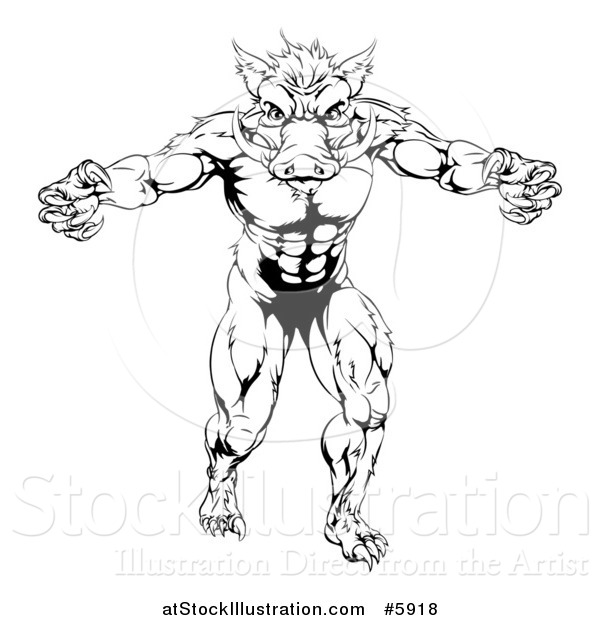 Vector Illustration of a Black and White Muscular Aggressive Boar Man Mascot Attacking