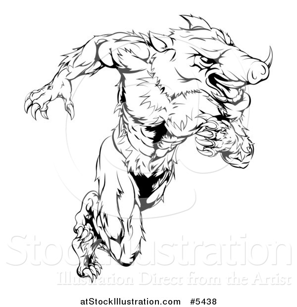 Vector Illustration of a Black and White Muscular Aggressive Boar Mascot Running Upright