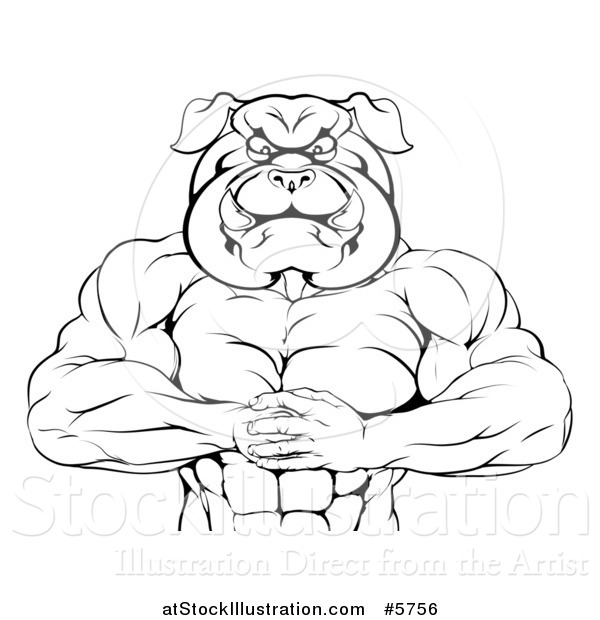 Vector Illustration of a Black and White Muscular Bulldog Man Punching One Fist into a Palm