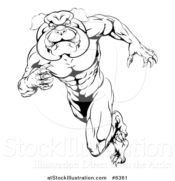 Vector Illustration of a Black and White Muscular Tough Bulldog Man Mascot Sprinting Upright