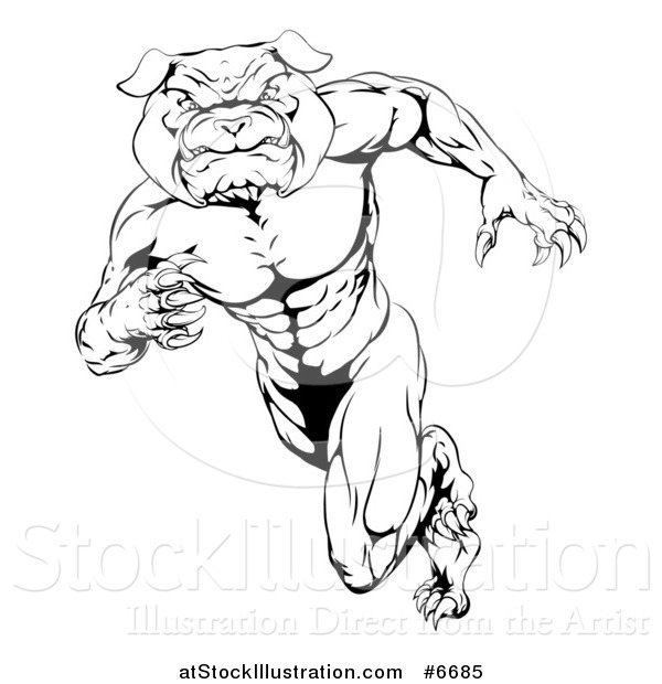 Vector Illustration of a Black and White Muscular Tough Bulldog Man Mascot Sprinting Upright to the Left