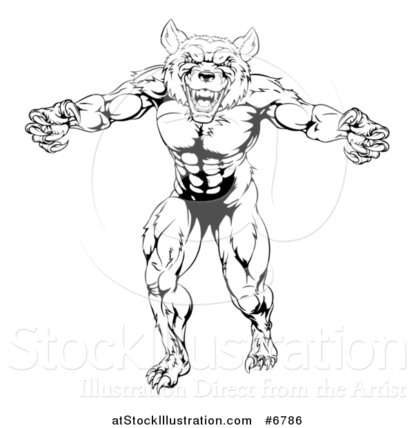 Vector Illustration of a Black and White Muscular Wolf Man Mascot Standing in a Threatening Stance
