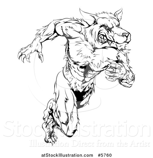 Vector Illustration of a Black and White Muscular Wolf Man Running Upright