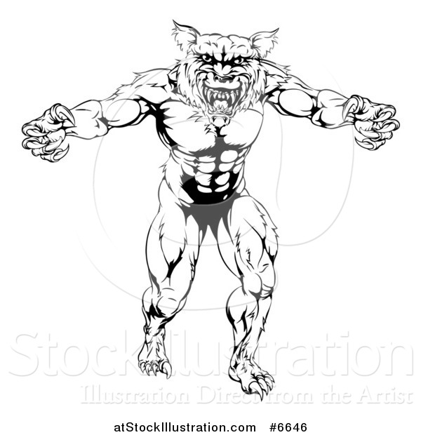 Vector Illustration of a Black and White Muscular Wolf Mascot Standing in a Threatening Stance