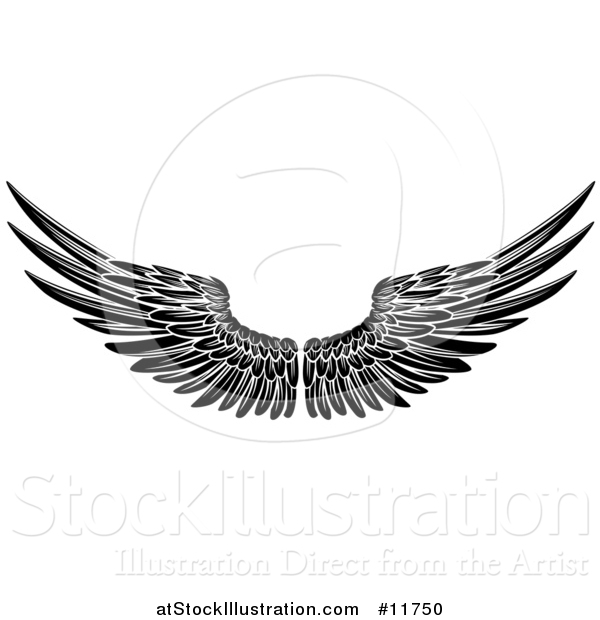 Vector Illustration of a Black and White Pair of Feathered Wings