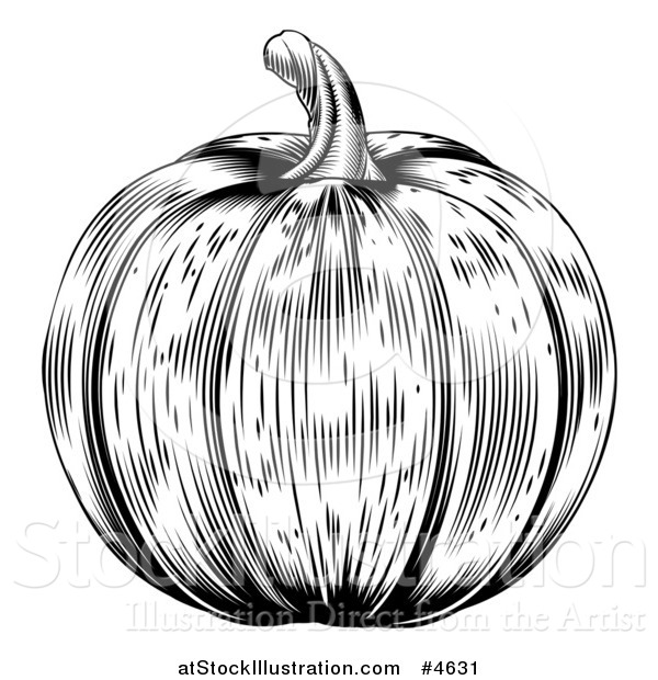 Vector Illustration of a Black and White Pumpkin