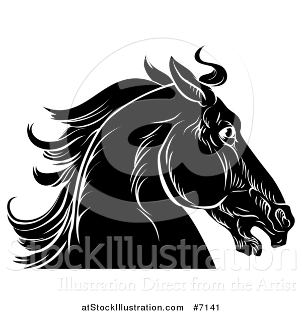 Vector Illustration of a Black and White Sketched Horse Head in Profile