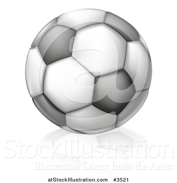 Vector Illustration of a Black and White Soccer Ball and Reflection