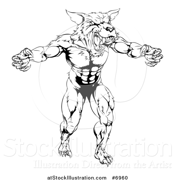 Vector Illustration of a Black and White Threatening Muscular Wolf Man Mascot