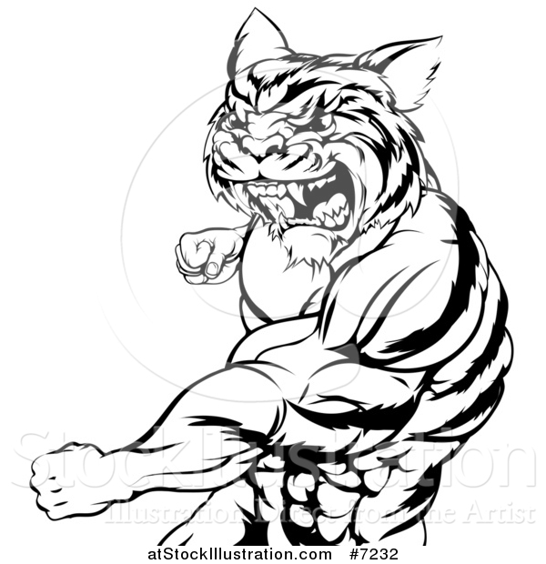 Vector Illustration of a Black and White Vicious Roaring Muscular Tiger Man Punching