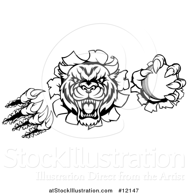 Vector Illustration of a Black and White Vicious Wildcat Mascot Shredding Through a Wall with a Cricket Ball