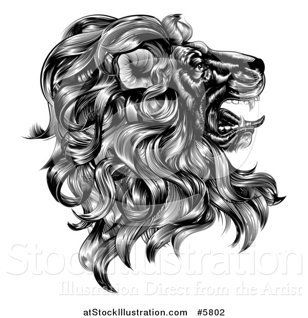 Vector Illustration of a Black and White Vintage Engraved Profiled Heraldic Lion Head