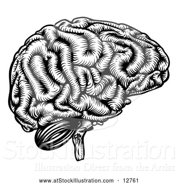 Vector Illustration of a Black Etched Human Brain
