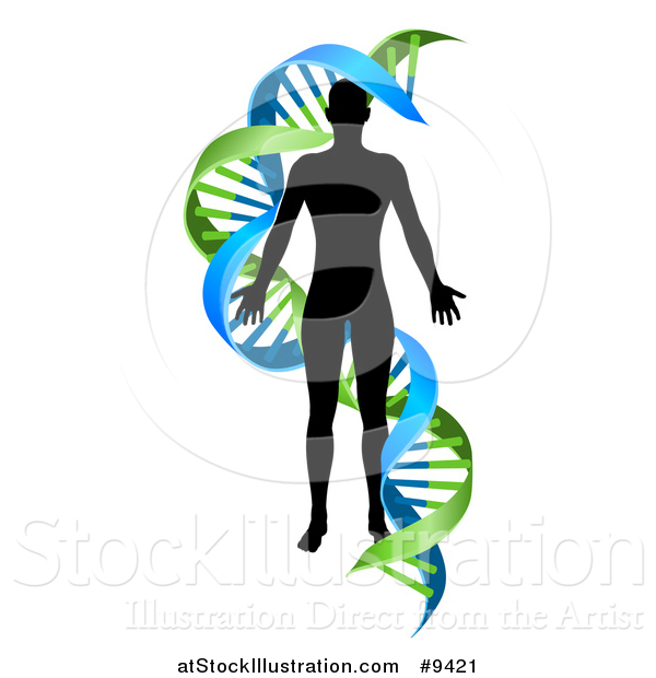 Vector Illustration of a Black Silhoeutted Person in a Blue and Green Double Helix Dna Strand
