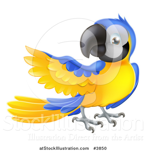Vector Illustration of a Blue and Yellow Parrot Presenting