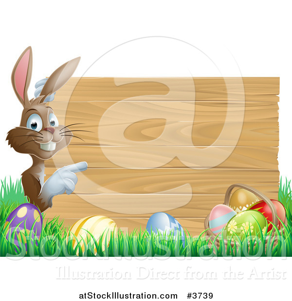 Vector Illustration of a Brown Bunny Pointing to a Wooden Sign over Easter Eggs in Grass
