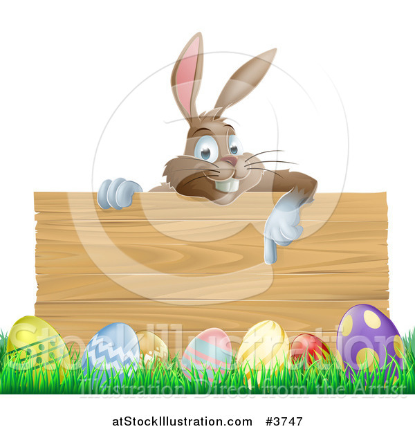 Vector Illustration of a Brown Easter Bunny Pointing down at a Wood Sign over Eggs in Grass
