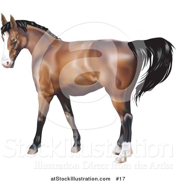 Vector Illustration of a Brown Horse with a Black Mane