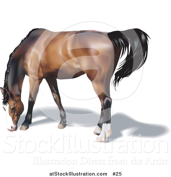 Vector Illustration of a Brown Horse with a Black Mane Grazing