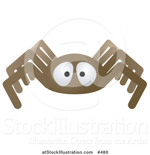 Vector Illustration of a Brown Spider