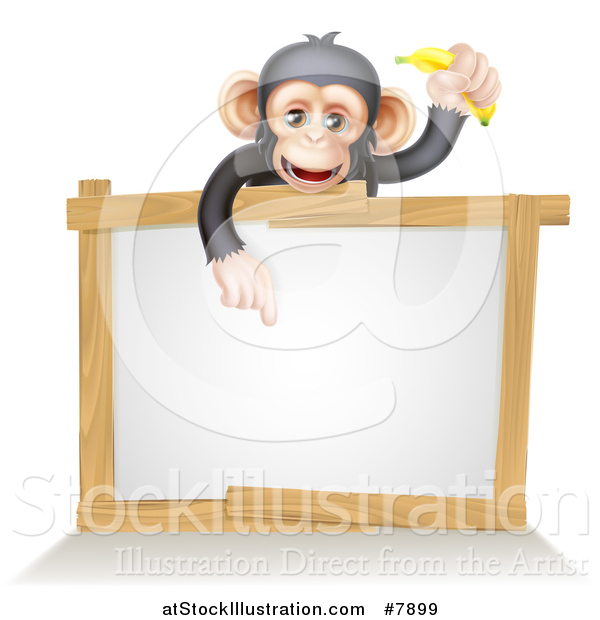 Vector Illustration of a Cartoon Black and Tan Happy Baby Chimpanzee Monkey Holding a Banana and Pointing down over a Blank White Sign Framed in Wood