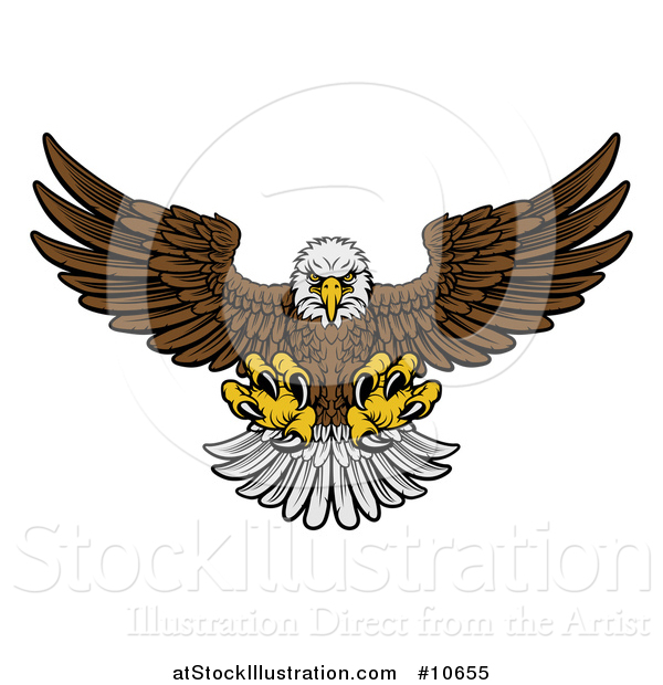 Vector Illustration of a Cartoon Fierce Swooping Bald Eagle with Talons Extended, Flying Forward