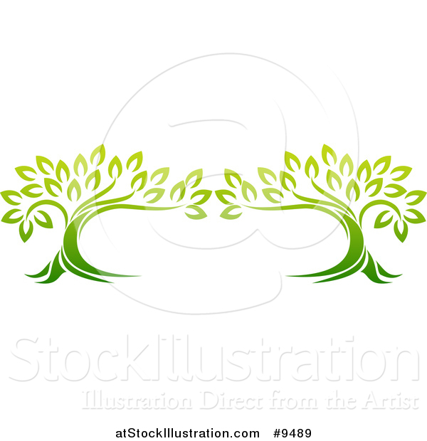 Vector Illustration of a Design of Two Gradient Green Mature Trees Forming a Frame