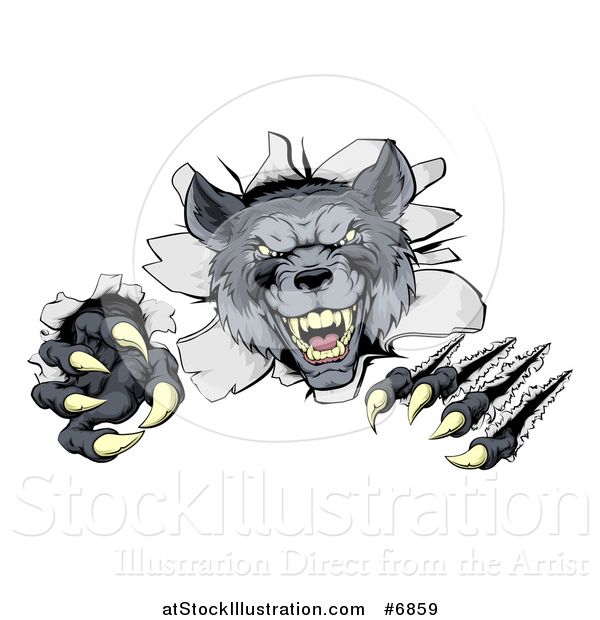 Vector Illustration of a Ferocious Gray Wolf Slashing and Breaking Through a Wall