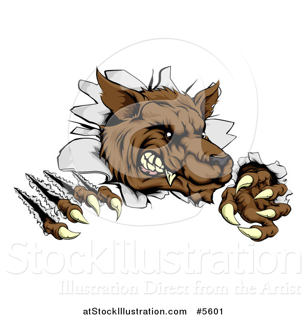 Vector Illustration of a Ferocious Wolf Scratching and Breaking Through a Wall