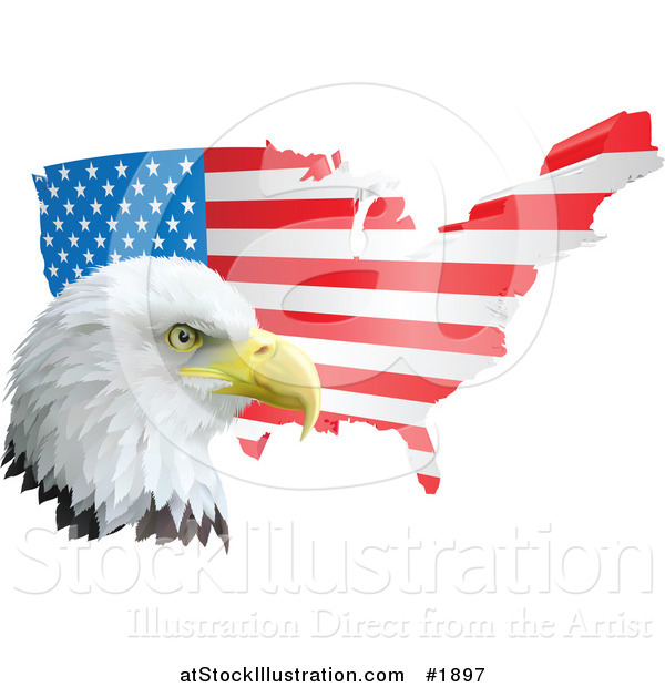 Vector Illustration of a Flag Map and American Bald Eagle