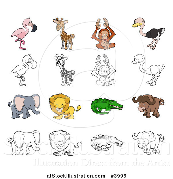 Vector Illustration of a Flamingo Giraffe Orangutan Ostrich Elephant Lion Crocodile and Buffalo in Color and Outline