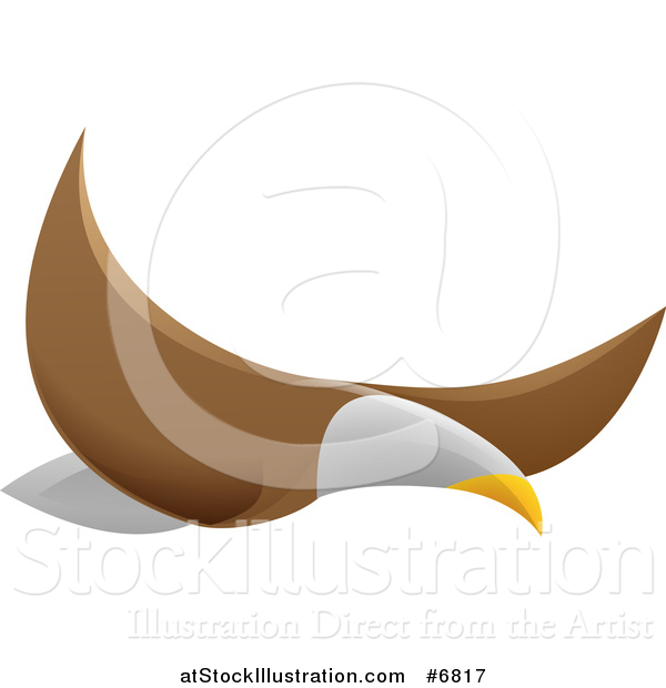Vector Illustration of a Flying Bald Eagle