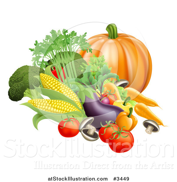 Vector Illustration of a Fresh Harvest Vegetables