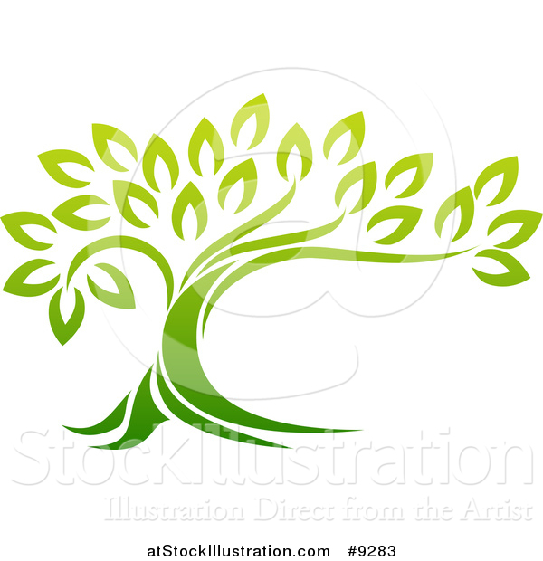 Vector Illustration of a Gradient Green Mature Tree with a Curving Trunk