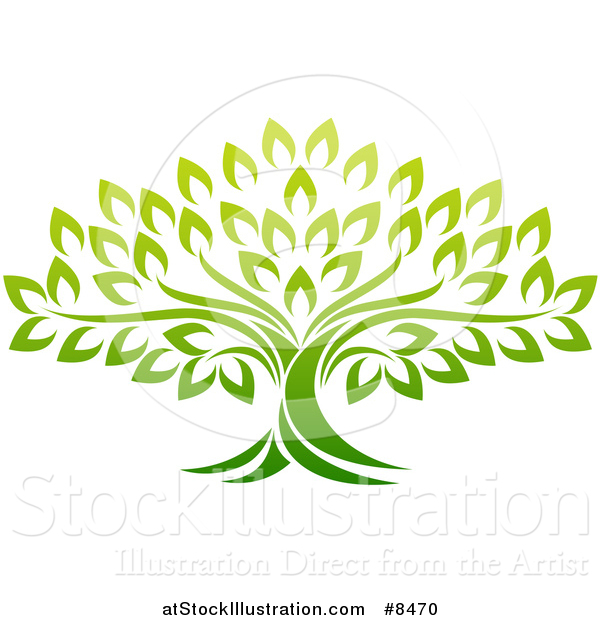 Vector Illustration of a Gradient Mature Green Tree