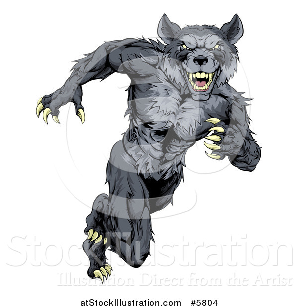 Vector Illustration of a Gray Muscular Wolf Man Sprinting or Running Upright