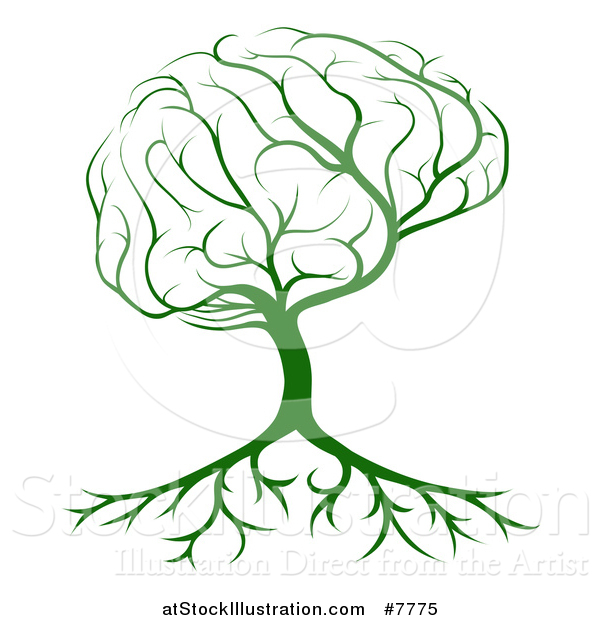 Vector Illustration of a Green Brain Canopied Tree with Roots