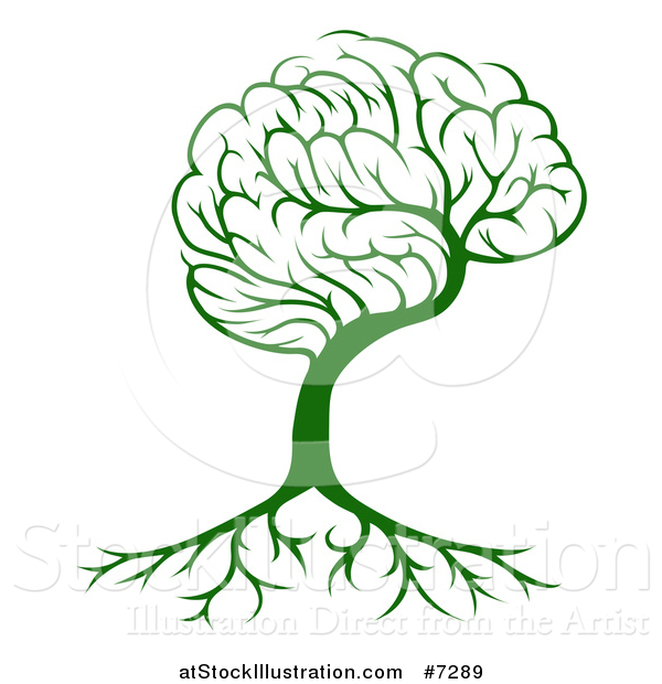 Vector Illustration of a Green Brain Tree and a Roots
